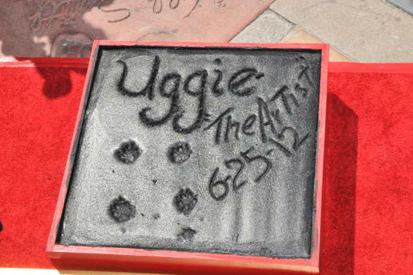 Uggie, the 10-year-old Jack Russell terrier who starred in 'The Artist,' was honored with a retirement party and a paw print ceremony at Grauman's Chinese Theatre on June 25, 2012. <br /><br />'The Artist' will be released on Blu-ray and DVD on June 26.
