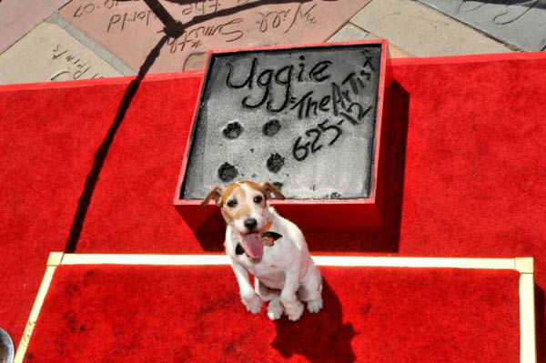 "<div class=""meta image-caption""><div class=""origin-logo origin-image ""><span></span></div><span class=""caption-text"">Uggie, the 10-year-old Jack Russell terrier who starred in 'The Artist,' was honored with a retirement party and a paw print ceremony at Grauman's Chinese Theatre on June 25, 2012.  'The Artist' will be released on Blu-ray and DVD on June 26. (Photo/Robert Freeman)</span></div>"