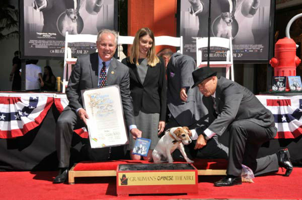 Uggie, the 10-year-old Jack Russell terrier who starred in &#39;The Artist,&#39; was honored with a retirement party and a paw print ceremony at Grauman&#39;s Chinese Theatre on June 25, 2012. In this photo, Uggie is with Los Angeles City councilman Tom LaBonge, who declared it Uggie Day.  &#39;The Artist&#39; will be released on Blu-ray and DVD on June 26. <span class=meta>(Photo&#47;Robert Freeman)</span>