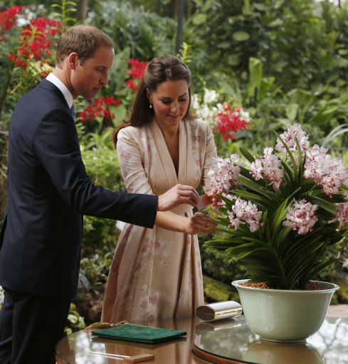 The Duke and Duchess of Cambridge visit the botanic gardens in Singapore on September 12, 2012, on behalf of The Queen in celebration of Her Majesty&#39;s Diamond Jubilee. Middleton wore a Jenny Packham pink knee-length dress with an orchid pattern with off-white L.K. Bennett Sledges. <span class=meta>(Danny Lawson)</span>