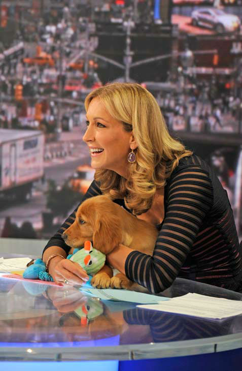 "<div class=""meta ""><span class=""caption-text "">Lara Spencer appeared with a golden retriever puppy to on June 17, 2013, promote the show's 'Dog vs. Dog' week. (ABC Photo/ Donna Svennevik)</span></div>"