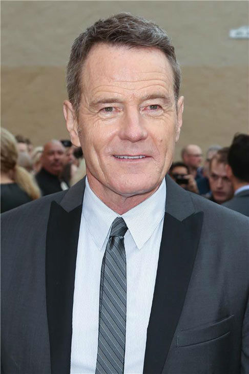 Brian Cranston poses for photographers on the black carpet at the AMC party celebrating the fifth and final season of the hit show &#39;Breaking Bad.&#39; <span class=meta>(Chris Hatcher&#47;startraksphoto.com)</span>
