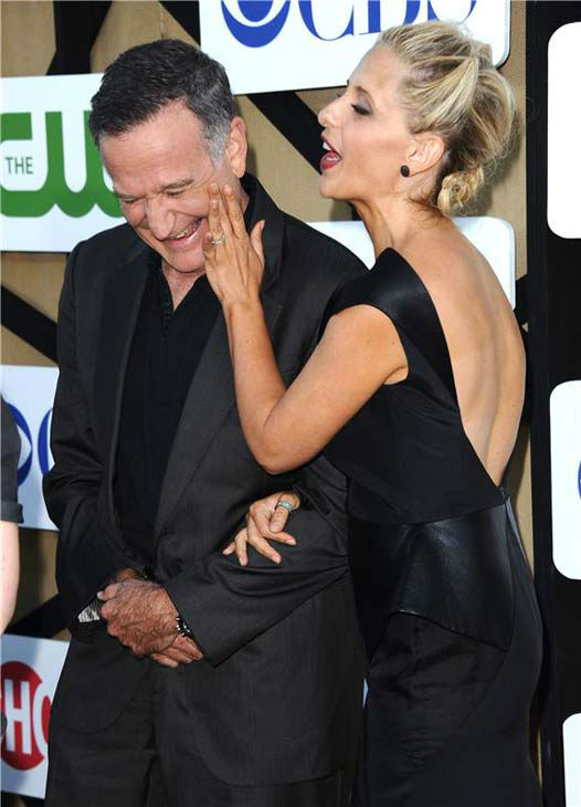 Robin Williams and Sarah Michelle Gellar, costars in the upcoming CBS show &#39;The Crazy Ones,&#39; laugh together on the tan carpet at the CBS, CW and Showtime TCA event in Beverly Hills, California on July 29, 2013. <span class=meta>(Sara De Boer&#47;startraksphoto.com)</span>