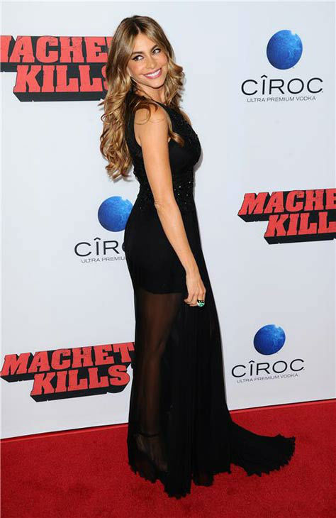 "<div class=""meta image-caption""><div class=""origin-logo origin-image ""><span></span></div><span class=""caption-text"">Sofia Vergara appears at the 'Machete Kills' premiere in Los Angeles, California on Oct. 2, 2013. (Sara De Boer / startraksphoto.com)</span></div>"