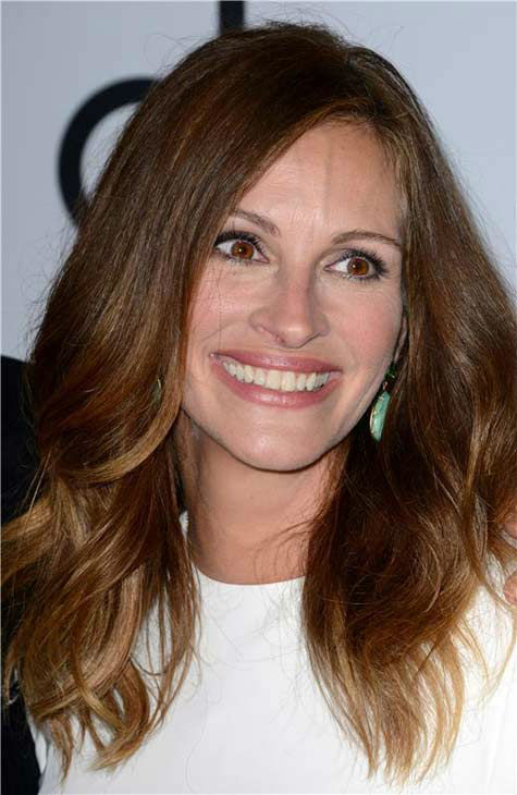 Julia Roberts appears at the 17th annual Hollywood Film Awards in Los Angeles, California on Oct. 21, 2013. <span class=meta>(Lionel Hahn &#47; startraksphoto.com)</span>