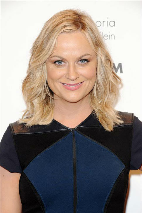 Amy Poehler appears at the IFP Gotham Independent Film Awards in New York City on Dec. 2, 2013. <span class=meta>(Bill Davila&#47;startraksphoto.com)</span>