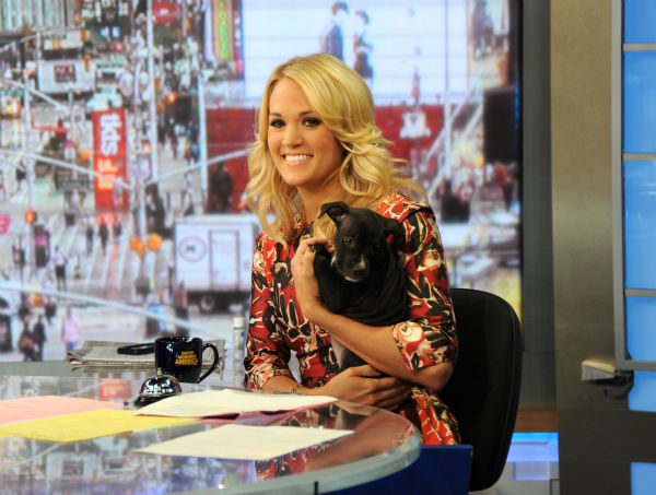 "<div class=""meta image-caption""><div class=""origin-logo origin-image ""><span></span></div><span class=""caption-text"">Guest co-host Carrie Underwood appears on ABC's 'Good Morning America' ('GMA') with a puppy -- who is up for adoption -- on Monday, Aug. 12, 2013. (ABC Photo / Donna Svennevik)</span></div>"