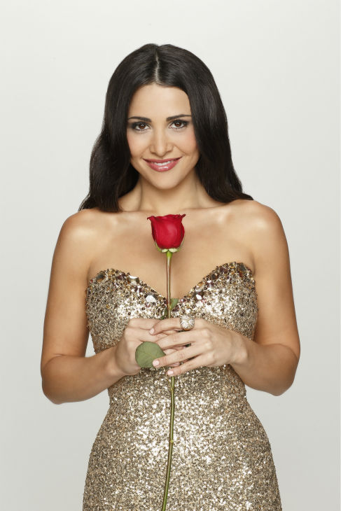 &#39;The Bachelorette&#39; season 10 star Andi Dorfman, 26, is seen in a publicity photo for the series, which is set to return on May 19, 2014. <span class=meta>(ABC Photo &#47; Craig Sjodin)</span>