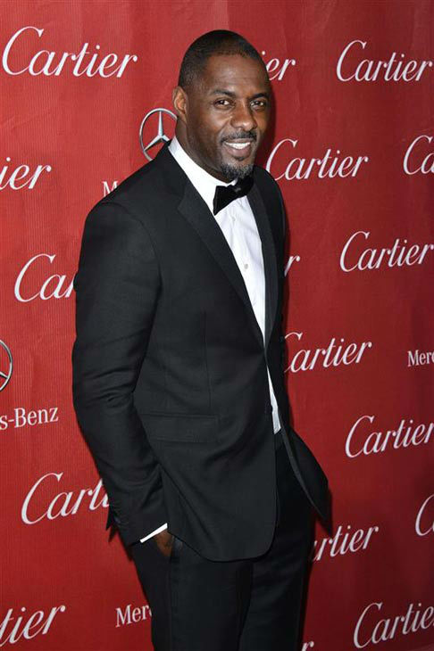 Idris Elba appears at the 2014 Palm Springs International Film Festival Awards Gala on Jan. 4, 2013. <span class=meta>(Tony Dimaio&#47;startraksphoto.com)</span>