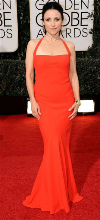 Julia Louis-Dreyfus appears at the 2014 Golden Globe Awards in Beverly Hills, California on Jan. 13, 2014. <span class=meta>(Sara De Boer &#47; Startraksphoto.com)</span>