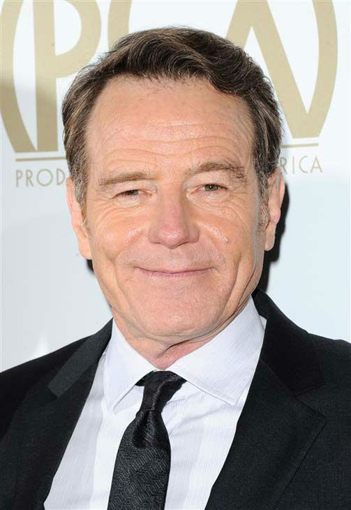 Bryan Cranston appears at the 25th annual Producer&#39;s Guild Awards &#40;PGAs&#41; in Los Angeles, California on Jan. 19, 2014.  <span class=meta>(Sara De Boer &#47; startraksphoto.com)</span>