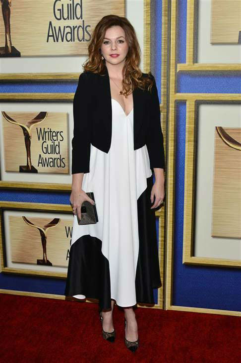 "<div class=""meta image-caption""><div class=""origin-logo origin-image ""><span></span></div><span class=""caption-text"">Amber Tamblyn appears at the 2014 Writer's Guild Awards in Los Angeles, California on Feb. 1, 2014. (Tony DiMaio / startraksphoto.com)</span></div>"