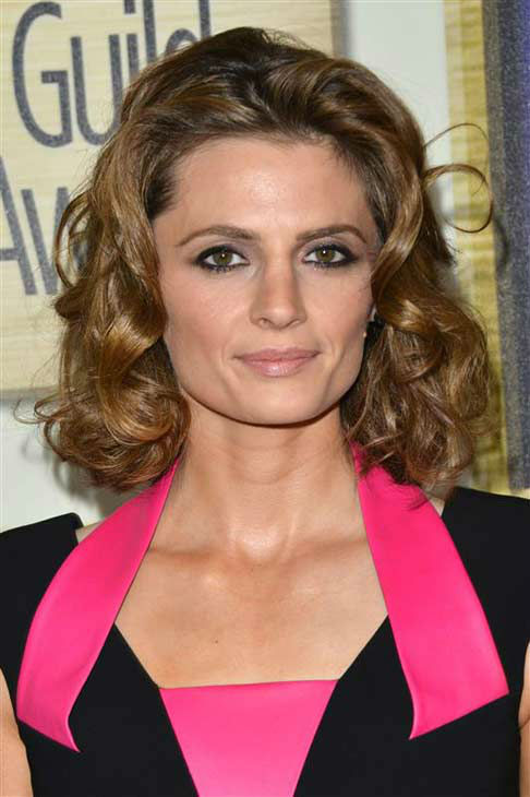 Stana Katic &#40;ABC&#39;s &#39;Castle&#39;&#41; appears at the 2014 Writer&#39;s Guild Awards in Los Angeles, California on Feb. 1, 2014. <span class=meta>(Tony DiMaio &#47; startraksphoto.com)</span>