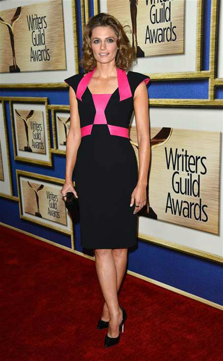 Stana Katic (ABC's 'Castle') appears at the 2014 Writer's Guild Awards in Los Angeles, California on Feb. 1, 2014.