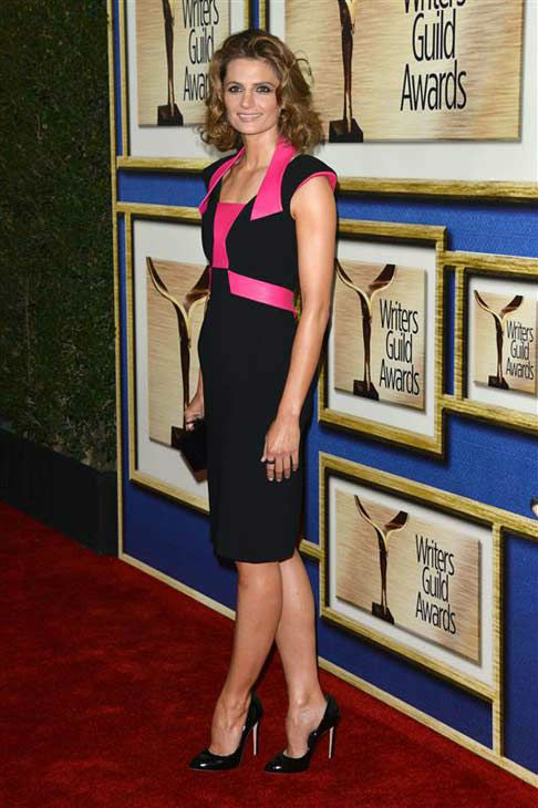 "<div class=""meta image-caption""><div class=""origin-logo origin-image ""><span></span></div><span class=""caption-text"">Stana Katic (ABC's 'Castle') appears at the 2014 Writer's Guild Awards in Los Angeles, California on Feb. 1, 2014. (Tony DiMaio / startraksphoto.com)</span></div>"