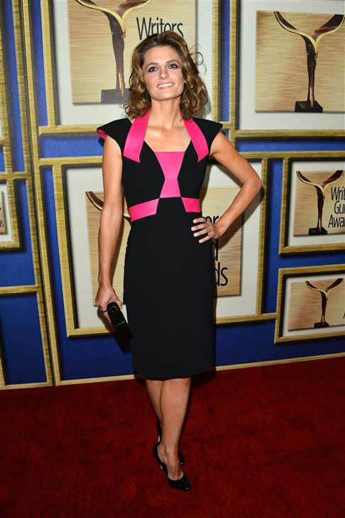 "<div class=""meta ""><span class=""caption-text "">Stana Katic (ABC's 'Castle') appears at the 2014 Writer's Guild Awards in Los Angeles, California on Feb. 1, 2014. (Tony DiMaio / startraksphoto.com)</span></div>"