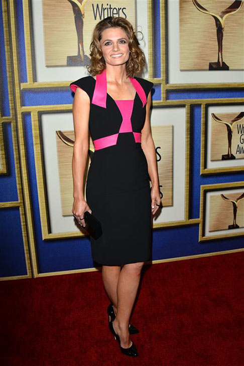 "<div class=""meta image-caption""><div class=""origin-logo origin-image ""><span></span></div><span class=""caption-text"">Stana Katic (ABC's 'Castle') appears at the 2014 Writer's Guild Awards in Los Angeles on Feb. 1, 2014. (Tony DiMaio / Startraksphoto.com)</span></div>"