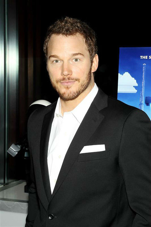"<div class=""meta ""><span class=""caption-text "">Chris Pratt appears at the New York screening of 'The LEGO Movie' on Feb. 5, 2014. (Marion Curtis/Startraksphoto.com)</span></div>"