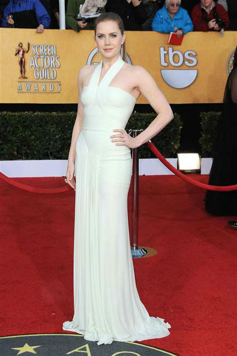 Amy Adams appears at the 17th annual Screen Actors Guild Awards in Los Angeles, California on Jan. 30, 2011.  <span class=meta>(Kyle Rover &#47; startraksphoto.com)</span>
