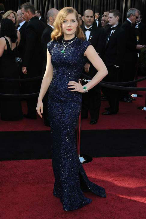 Amy Adams appears at the 83rd annual Academy Awards in Los Angeles, California on Feb. 27, 2011.  <span class=meta>(Kyle Rover &#47; startraksphoto.com)</span>