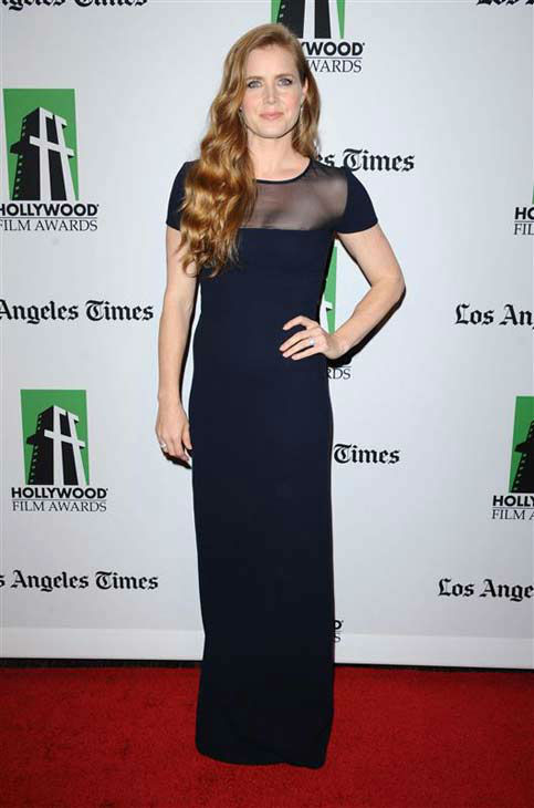Amy Adams appears at the 16th annual Hollywood Film Awards in Los Angeles, California on Oct. 22, 2012.  <span class=meta>(Sara De Boer &#47; startraksphoto.com)</span>