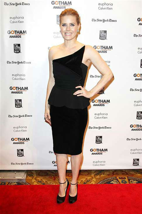 "<div class=""meta ""><span class=""caption-text "">Amy Adams appears at the IFP's 22nd annual Gotham Independent Film Awards in New York City on Nov. 26, 2012.  (Kristina Bumphrey / startraksphoto.com)</span></div>"