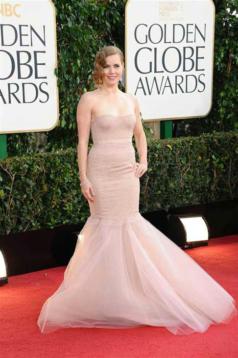 Amy Adams appears at the 70th annual Golden Globe Awards in Los Angeles, California on Jan. 13, 2013.  <span class=meta>(Sara De Boer &#47; startraksphoto.com)</span>