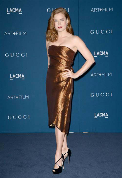 Amy Adams appears at the 2013 LACMA Art and Film Gala in Los Angeles, California on Nov. 2, 2013.  <span class=meta>(Lionel Hahn &#47; startraksphoto.com)</span>