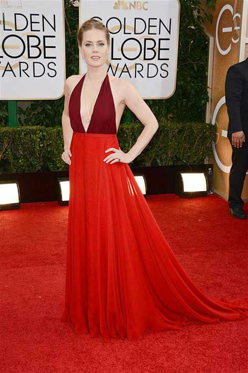 "<div class=""meta ""><span class=""caption-text "">Amy Adams appears at the 71st annual Golden Globe Awards in Los Angeles, California on Jan. 12, 2014.  (Lionel Hahn / startraksphoto.com)</span></div>"