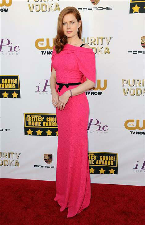 "<div class=""meta ""><span class=""caption-text "">Amy Adams appears at the 19th annual Critics' Choice Awards in Santa Monica, California on Jan. 16, 2014.  (Sara De Boer / startraksphoto.com)</span></div>"