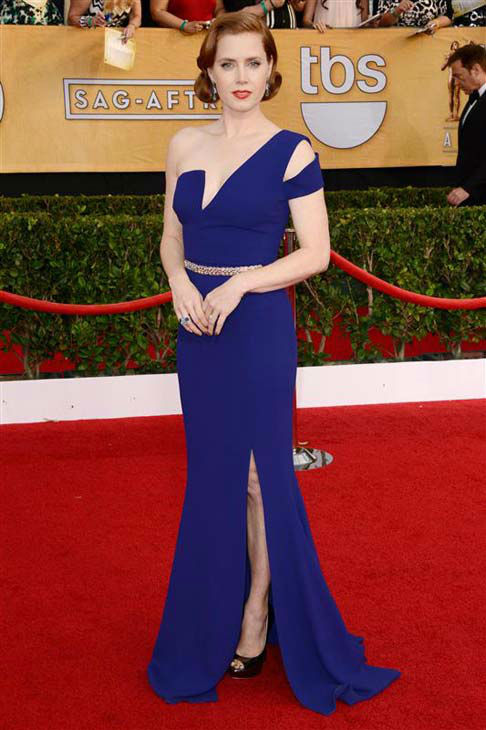 "<div class=""meta ""><span class=""caption-text "">Amy Adams appears at the 20th annual Screen Actors Guild Awards in Los Angeles, California on Jan. 18, 2014.  (Lionel Hahn / startraksphoto.com)</span></div>"