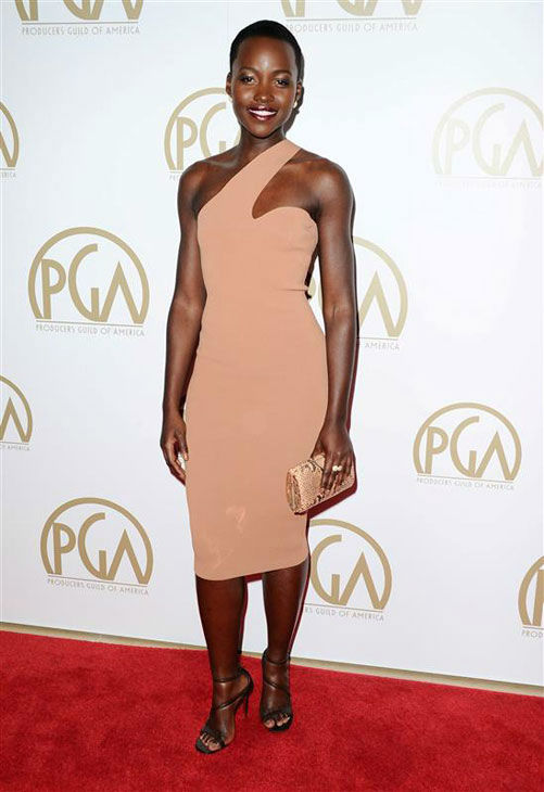 "<div class=""meta image-caption""><div class=""origin-logo origin-image ""><span></span></div><span class=""caption-text"">Lupita Nyong'o appears at the 25th Annual Producers Guild Awards on Jan. 19, 2014. (Sara De Boer/startraksphoto.com)</span></div>"
