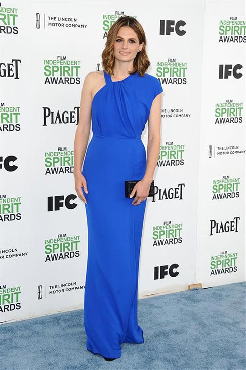 "<div class=""meta image-caption""><div class=""origin-logo origin-image ""><span></span></div><span class=""caption-text"">Stana Katic (ABC's 'Castle') appears at the 2014 Film Independent Spirit Awards in Santa Monica, California on March 1, 2014. (Kyle Rover / Startraksphoto.com)</span></div>"