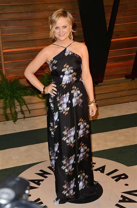 Amy Poehler appears at the 2014 Vanity Fair Oscar party in Los Angeles, California on March 2, 2014. <span class=meta>(Tony DiMaio &#47; startraksphoto.com)</span>
