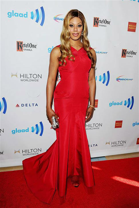 Laverne Cox appears at the 25th Annual GLAAD Media Awards in Beverly Hills, California, on April 12, 2014. <span class=meta>(Daniel Robertson&#47;startraksphoto.com)</span>