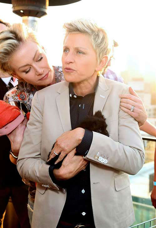 We love Ellen DeGeneres because of her love for animals, as evidenced in this photo with an adorable puppy and wife Portia De Rossi at the Saving SPOT! Second Annual Benefit in Los Angeles on Oct. 13, 2013. <span class=meta>(Sara Jaye Weiss &#47; startraksphoto.com)</span>