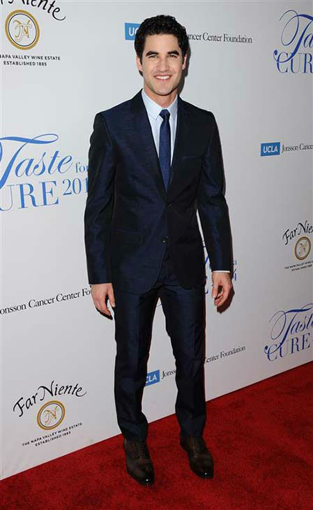 "<div class=""meta image-caption""><div class=""origin-logo origin-image ""><span></span></div><span class=""caption-text"">Darren Criss appears at the 19th annual 'Taste For A Cure' event in Los Angeles on April 25, 2014. (Sara De Boer / startraksphoto.com)</span></div>"
