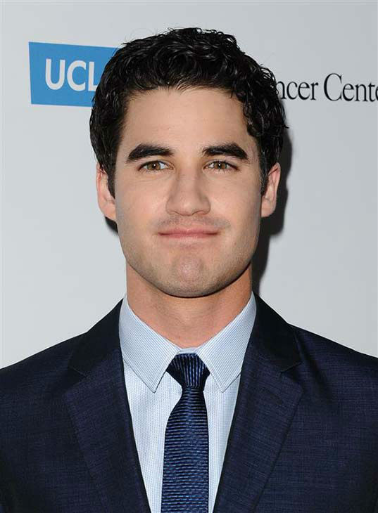 "<div class=""meta ""><span class=""caption-text "">Darren Criss appears at the 19th annual 'Taste For A Cure' event in Los Angeles on April 25, 2014. (Sara De Boer / startraksphoto.com)</span></div>"
