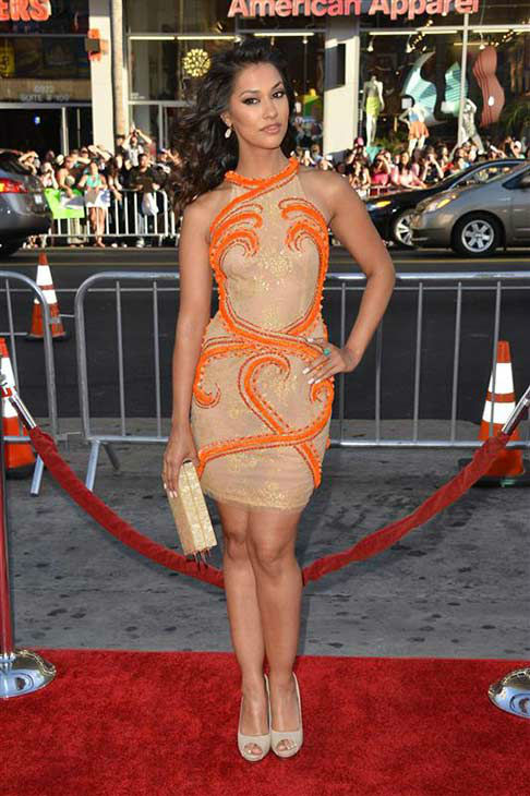 Janina Gavankar appears at the &#39;True Blood&#39; season 7 premiere at the TCL Chinese Theater in Hollywood, California on June 17, 2014. <span class=meta>(Tony DiMaio&#47;startraksphoto.com)</span>