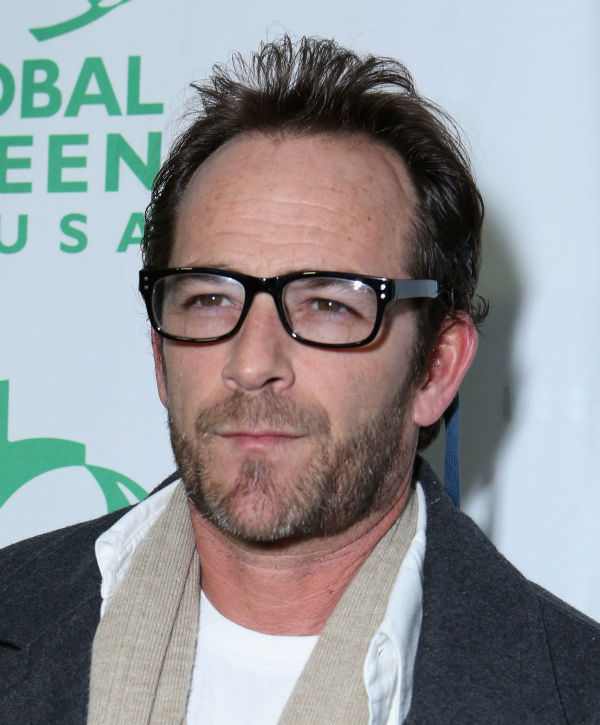 Luke Perry &#40;Dylan on &#39;Beverly Hills, 90210&#39;&#41; attends Global Green USA&#39;s 10th annual Pre-Oscars Party at the Avalon club in Hollywood, California on Feb. 20, 2013. <span class=meta>(Alexandra Wyman &#47; Getty Images for Global Green)</span>