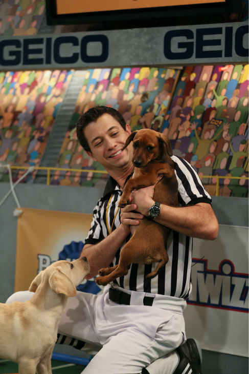 A referee makes a call as dogs play during Puppy Bowl X, which airs on Animal Planet on Feb. 2 at 3 p.m. ET. The NFL Super Bowl XLVIII starts officially at 3:30 p.m. ET. <span class=meta>(Animal Planet &#47; Damian Strohmeyer)</span>