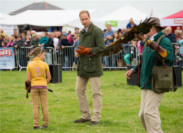 Prince William, Duke of Cambridge, prepares to hold a Harris Hawk during a falconry demonstration with birds of prey at the Anglesey agricultural show at Anglesey Showground in Bangor, Wales on Aug. 14, 2013. The event marked his first official engagement since the birth of his and wife Kate&#39;s son Prince George of Cambridge last month. Prince William was given two weeks of parental leave from his work as a RAF rescue helicopter pilot in Anglesey. <span class=meta>(Barcroft Media &#47; startraksphoto.com)</span>