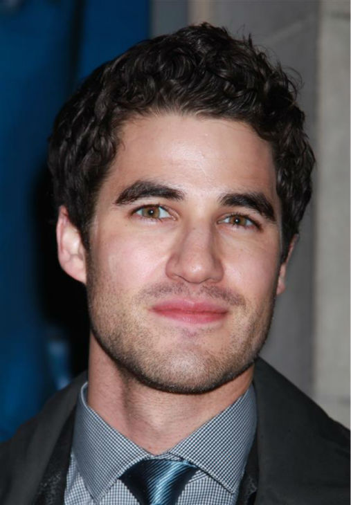 "<div class=""meta ""><span class=""caption-text "">Darren Criss of 'Glee' fame attends the opening night of the new Broadway musical 'If/Then' at the Richard Rodgers Theatre in New York on March 30, 2014. (Adam Nemser / Startraksphoto.com)</span></div>"