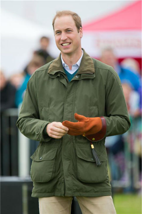 Prince William, Duke of Cambridge, prepares to hold a Harris Hawk during a falconry demonstration