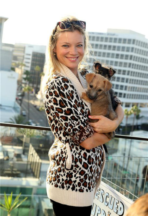 Actress Amy Smart appears at the Saving SPOT! benefit at the Thompson Beverly Hills hotel in California on Oct. 13, 2013. <span class=meta>(Sara Jaye Weiss &#47; StartraksPhoto.com)</span>