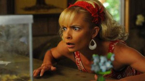 Jaime Pressly appears in a scene from the NBC comedy series, My Name is Earl. - Provided courtesy of NBC