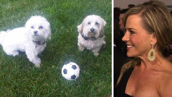 Julie Benz appears with her dogs Bamboo and Sugar in a photo posted on her Facebook page on June 3, 2011. / Julie Benz speaks to OnTheRedCarpet.com at the American Music Awards in Los Angeles in January 2011.