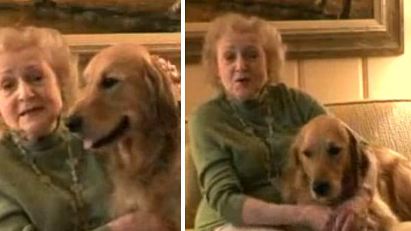 Betty White and her Golden Retriver, Pontiac, appear in a 2008 video ad for the Morris Animal Foundation, a group she has helped since 1971.