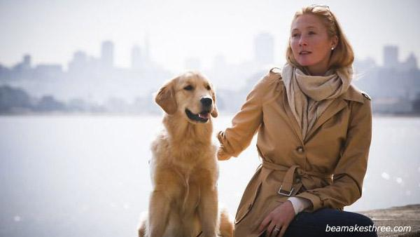 Maggie Rizer and her Golden Retreiver Bea appear in a photo posted on the supermodels official website on September 20, 2012. - Provided courtesy of beamakesthree.com