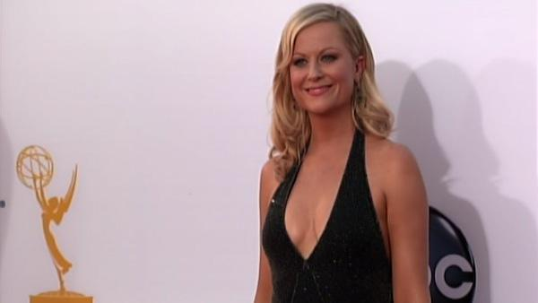 Amy Poehler stuns on the Emmys red carpet
